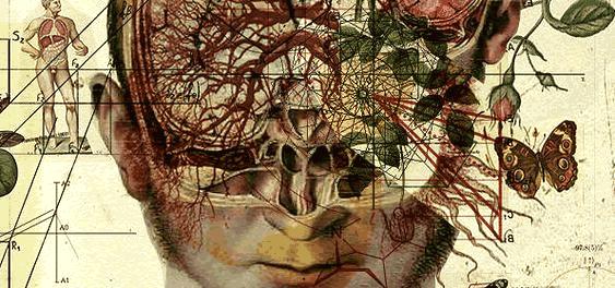 Cérebro e mente