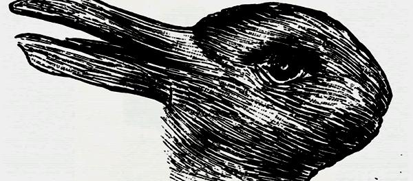 Percepção da realidade - o pato coelho de Wittgenstein