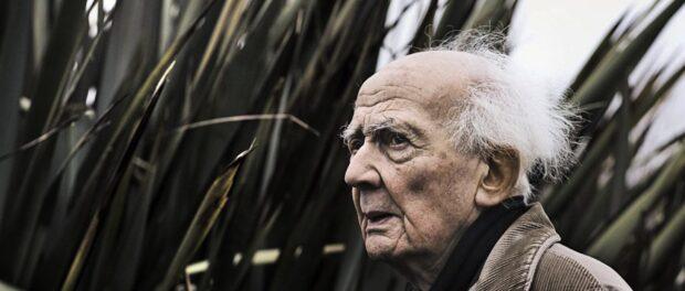 Zygmunt Bauman - capitalismo