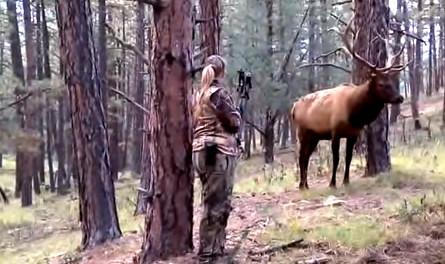 caça alteridade