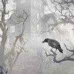 O Corvo, de Edgar Allan Poe (tradução de Milton Amado)