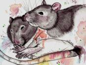 Sonho dos Ratos - Rubem Alves
