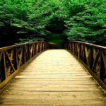 Construindo pontes: parábola sobre a concórdia