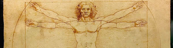Leonardo Da Vinci - O Homem Vitruviano