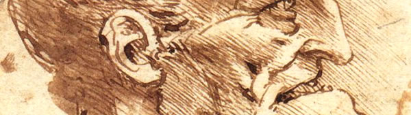 Perfil grotesco - Leonardo da Vinci