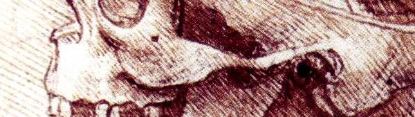 Crânio / Caveira - Leonardo da Vinci
