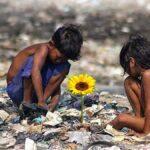Ilha das Flores: uma crítica à desigualdade