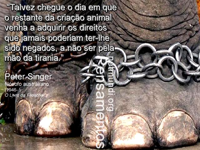 Peter Singer, filósofo australiano, direito dos animais, Libertação animal