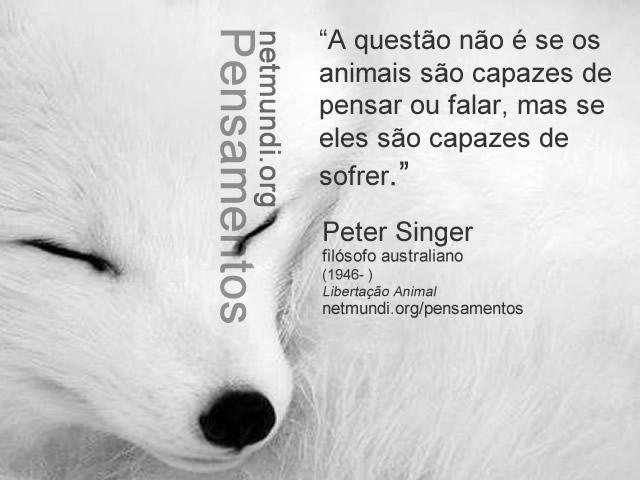 peter singer, filósofo australiano, libertação animal, direito dos animais